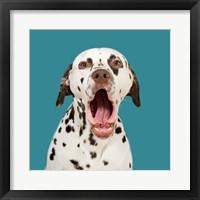 Framed Pongo the Dalmatian