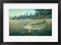 Framed Muskie Bay