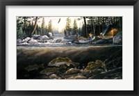 Framed Fishing The Falls