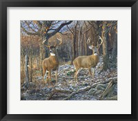 Framed Pair Of Eights
