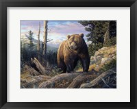 Framed Mountain Winds Grizzly