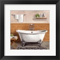 Framed Serene Bath I