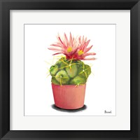 Framed Cactus Flowers I