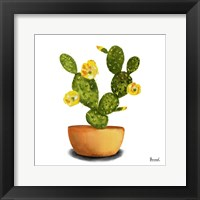 Framed Cactus Flowers III