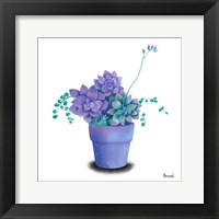 Framed Turquoise Succulents II