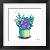Framed Turquoise Succulents III
