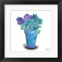 Framed Turquoise Succulents IV