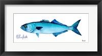 Framed Life of the Big Blue III
