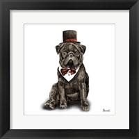 Framed Pugs in Hats III