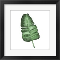 Leaves of the Tropics I Framed Print