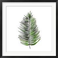 Framed Leaves of the Tropics IV