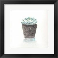 Framed Watercolor Cactus Still Life I