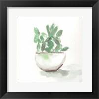 Framed Watercolor Cactus Still Life III