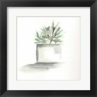 Framed Watercolor Cactus Still Life IV