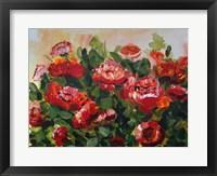 Framed Red Poppies Garden