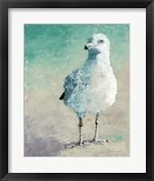 Framed Beach Bird II
