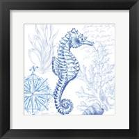 Framed Coastal Sketchbook Sea Horse