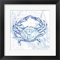 Framed Coastal Sketchbook Crab