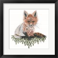 Framed Baby Fox
