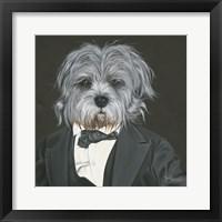 Framed Dog in Suit