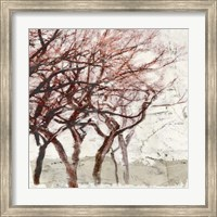Framed Rusty Trees I