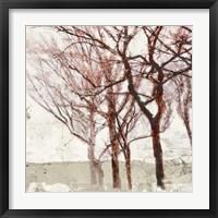 Framed Rusty Trees II