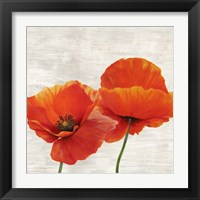 Framed Bright Poppies II