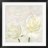Framed Classic Roses I