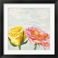 Framed Funky Roses I