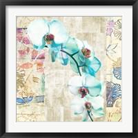 Framed Kaleidoscope Orchid II (detail)