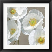 Framed Poppies on Taupe I