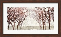 Framed Rusty Trees