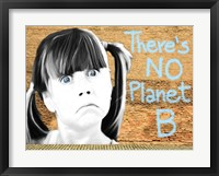 Framed No Planet B