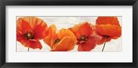 Framed Bright Poppies