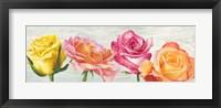 Framed Funky Roses