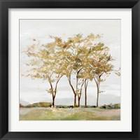 Framed Golden Acre Wood