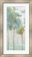 Framed Enlightenment Forest III