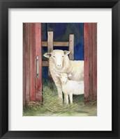 Framed Farm Family Sheep