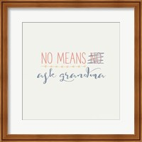 Framed Grandma Inspiration II Color