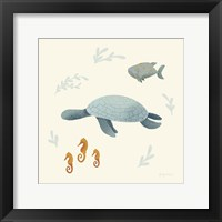 Framed Ocean Life Sea Turtle