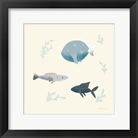 Framed Ocean Life Fish
