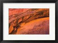 Framed Neon Canyon II