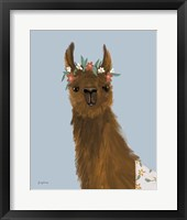 Framed Delightful Alpacas II