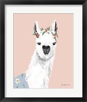 Framed Delightful Alpacas I