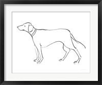 Framed Ink Dog VI