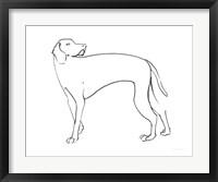 Framed Ink Dog V