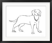 Framed Ink Dog III