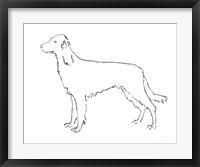 Framed Ink Dog II