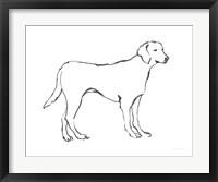 Framed Ink Dog I