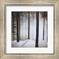 Framed Winter Solace